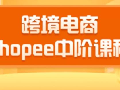 2020千鸟跨境电商蓝海新机会|shopee中阶课程百度云下载