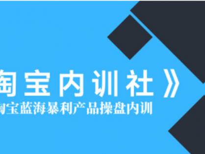 盗坤|淘宝内训社·淘宝蓝海暴利产品操盘内训价值5288元-百度云下载