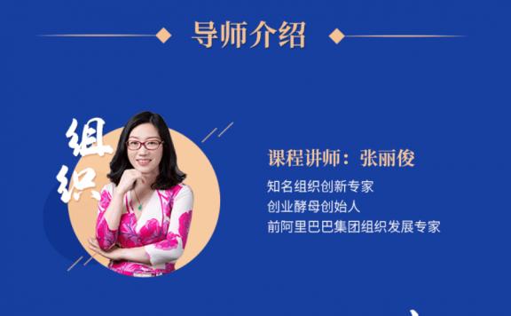张丽俊2020组织创新·企业策决者的一第工程价值1499元